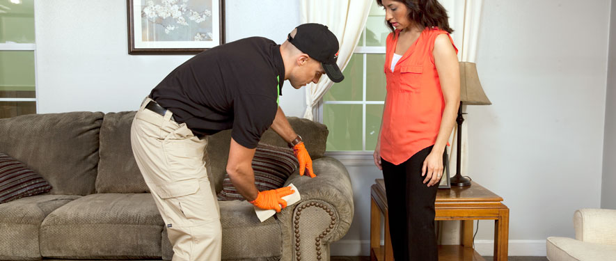 Ballston Spa, NY carpet upholstery cleaning